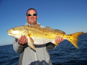 2 18 13 pensacola fishing perdido key gulf shores and for Pensacola bay fishing