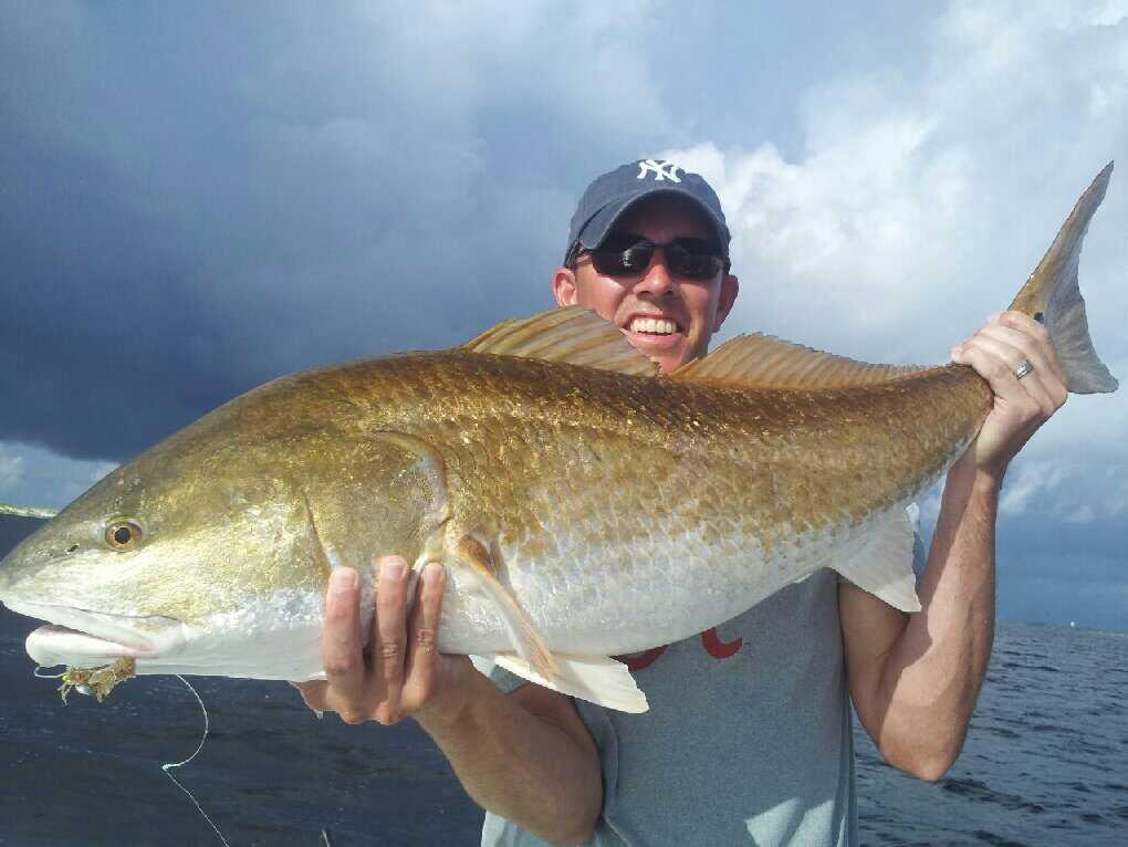 Perdido key fishing gulf shores fishing pensacola for Perdido key fishing